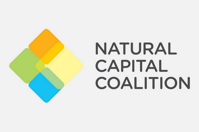 Developing a Framework for Natural Capital Accounting in Business